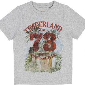 T-SHIRT GREY NATURE TIMBERLAND